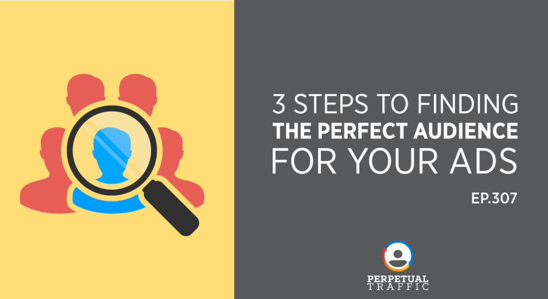 find perfect audience